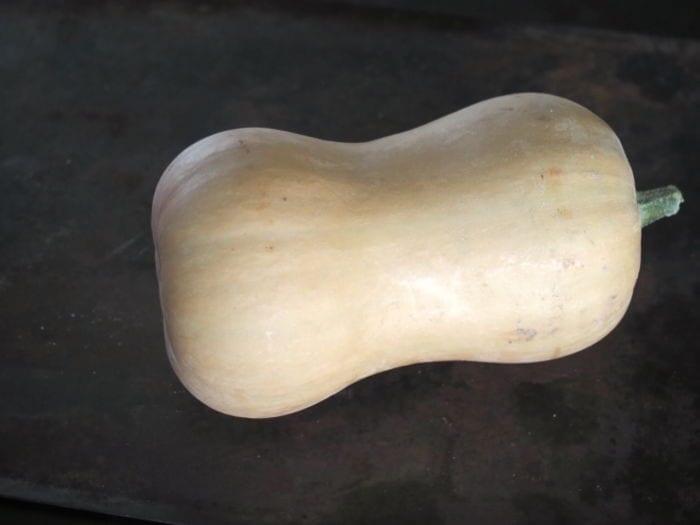 Butternut rôtie au boulgour de petit épeautre