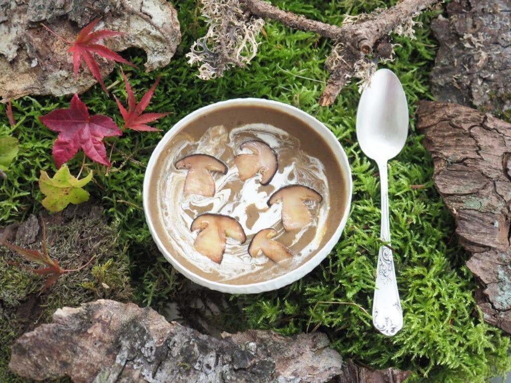 soupe de champignons sauvages