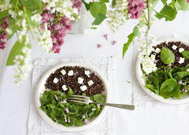 Salade de feuilles de tilleul express